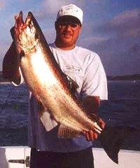 racine salmon charter boat