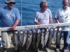 chicago salmon charter fishing