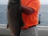 lake michigan trout charter