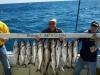 fishing lake michigan for salmon