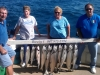 racine salmon charter fishing