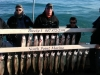Winthrop Harbor salmon charter boat catch