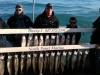 Winthrop Harbor salmon charter boat catch