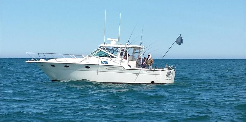 Winthrop harbor salmon and trout charter boat out of north for Fishing in lake michigan